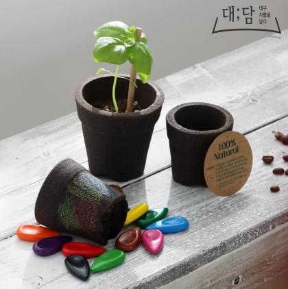커피연필세트,커피화분,커피화분키트